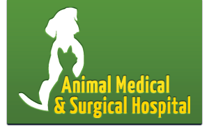 Animal Medical & Surgical Hospital, Gilmer, TX